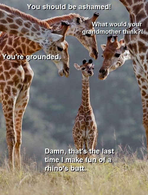 AmazondeJAnimals Giraffe Einteiler  Onesie  106cm
